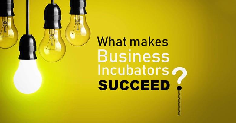 Graphic design services - Incubators